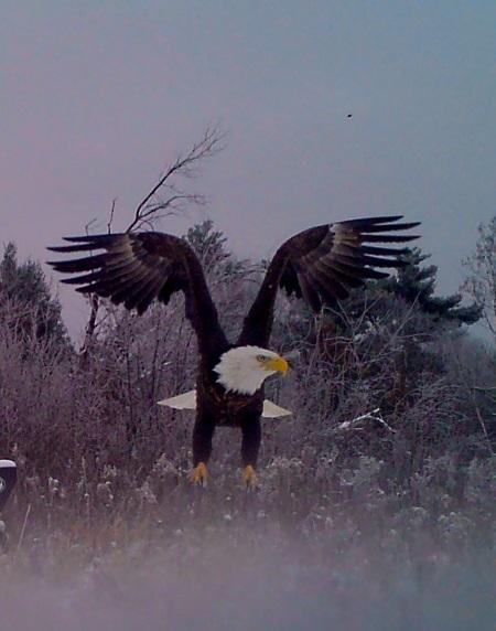Taken by Dr. John Ingalls near Falun, WI