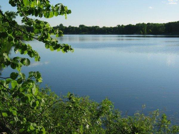 Clam Lake, MLS# 905147