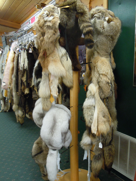 Fur = Warm