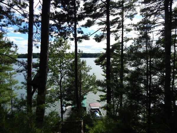 895632 Viola Lake $124,000