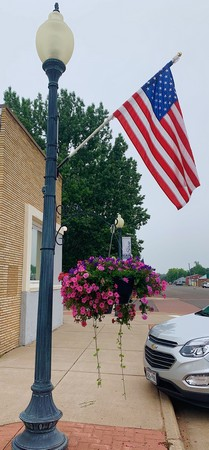 American flag sticking out of a lightpost with pink flowers